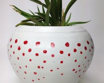 SECONDS SALE, Succulent Planter, Ceramic Planter, Porcelain Planter, Modern Planter, Flower Pot, Pottery Planter, Cactus Pot, Modern Decor