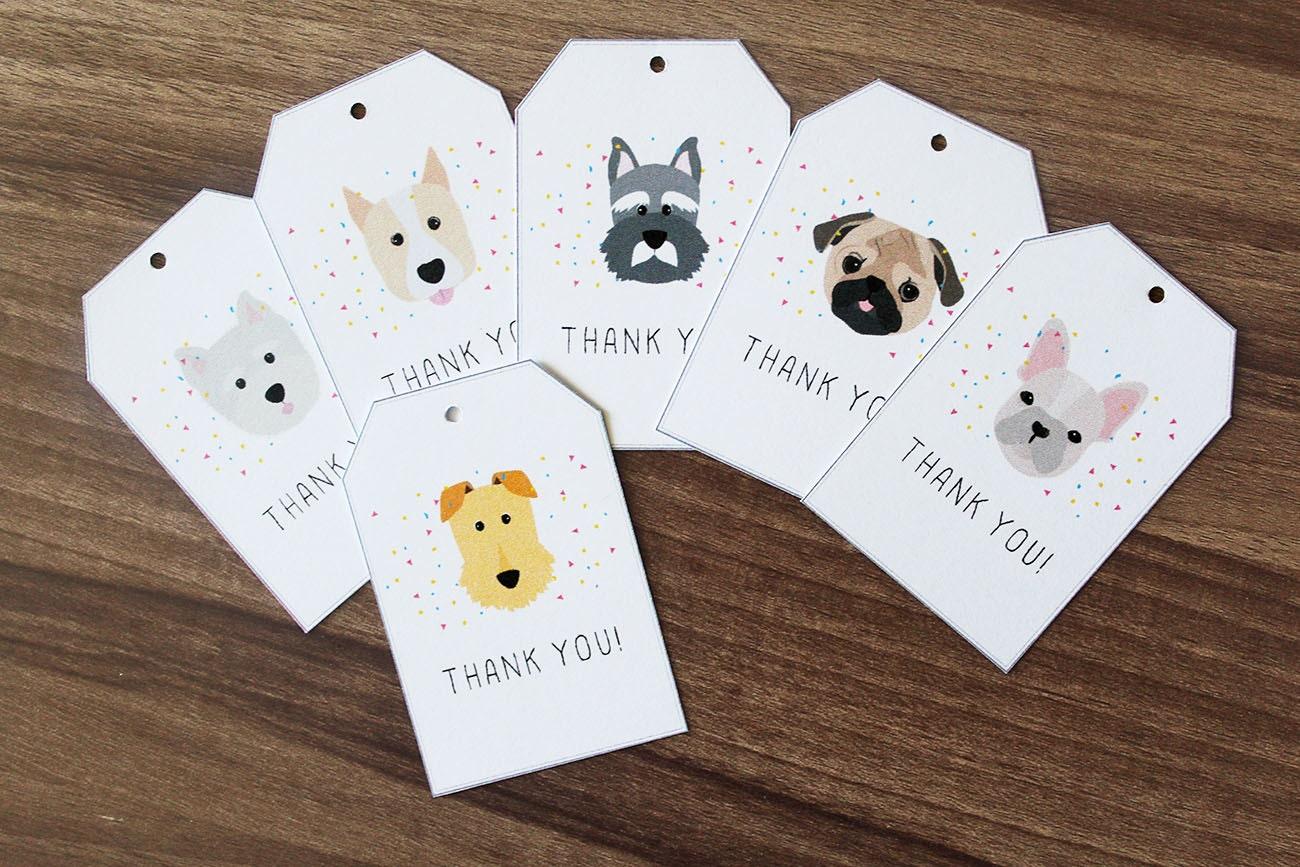 Where Can I Get Custom Dog Tags Made