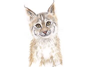 Bobcat Print, Animal Art, Wildcat Cub Portrait, Bobcat Art, Lynx, Kids Wall Art, Home Decor, Wildlife Art, Animal Portrait 13x19