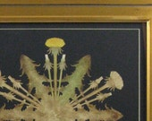 Dandelions papercuttings - painted with coffee and watercolor in gold leaf plein-air frame with dust cover and cord hanger