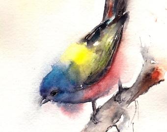 Bird painting, ORIGINAL Watercolor Painting, Bunting Painting, Bird Art, Colorful Bird