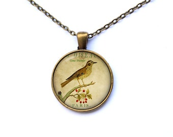 Finch necklace Bird jewelry Art charm Animal pendant  CWAO15