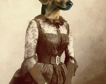 A very DASCHING LADY dog dachshund Victorian altered digital art print portrait anthro anthropomorphic surreal fantasy