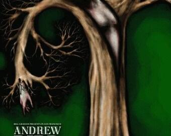 Andrew Bird Fillmore Original Concert Poster F993