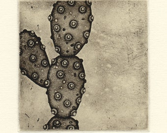 Etching with chine-collé succulent 70e007