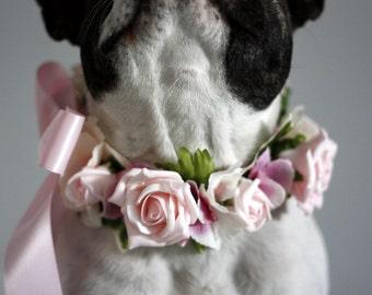 Flower Dog Collar for Weddings - Pastel Pink