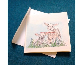 Card two little lambs