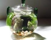 "Lucky Cat ""Green Tea"" Teapot Marimo Moss Balls Mini Aquarium/Terrarium"