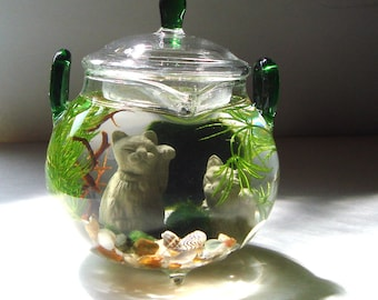 "Lucky Cat ""Green Tea"" Teapot Marimo Moss Balls Mini Aquarium/Terrarium"