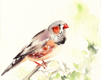 Original Watercolor Bird Painting, Amadin Bird, Watercolour Art
