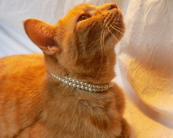 Pearl Cat Collar, Cat Pearl Necklace, White Pearls, Cat Necklace, Cat Collar, Dog Necklace, Dog Collar, Pet Collar, Pet Pearls, Pearl Strand