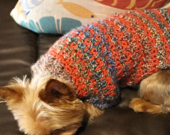 Shades of Autumn Dog Sweater - Small