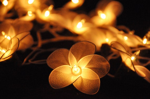 String Lights Living Room : 20 White Flower String Lights for Hanging by leelavadeelights