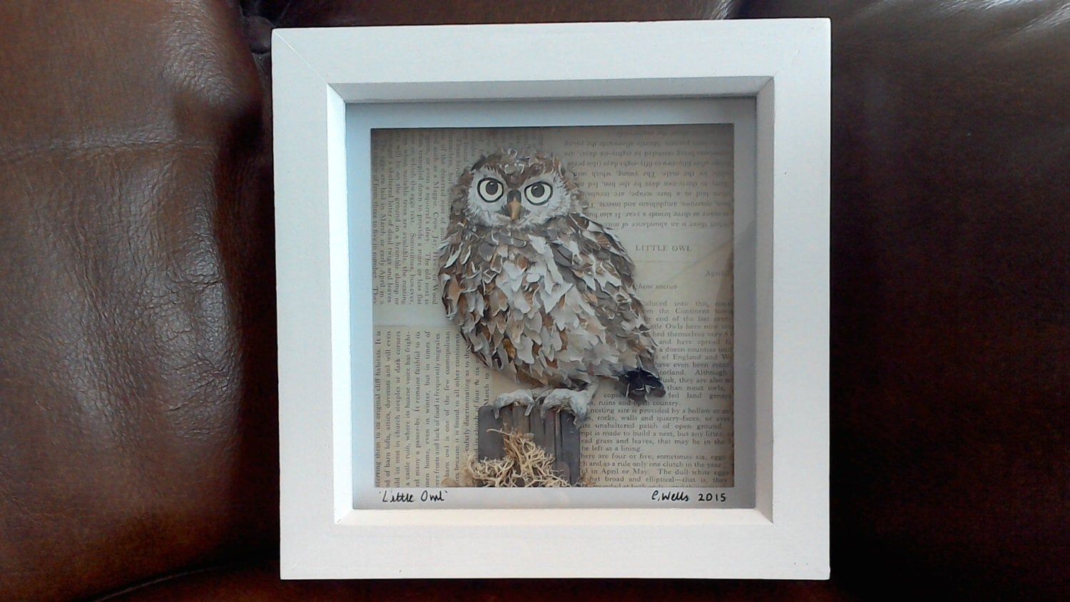 Little Owl Print Paper Owl Shadow Box Art Contemporary Owl