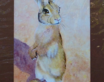 SALE - 50% Off,  RABBIT PRINT, Matted, From My Original Painting