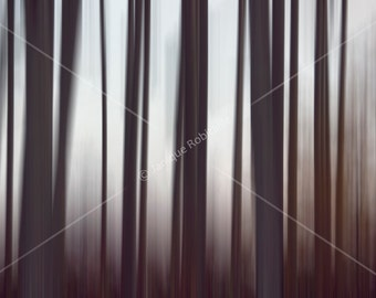 Fine Art Photography poster trees forest