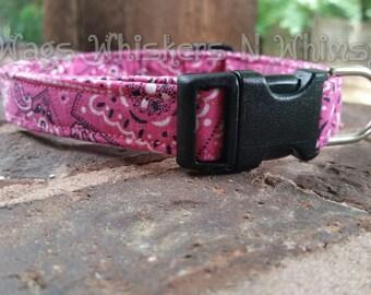 Pink Bandana Print Dog Collar -- All proceeds to animal charity