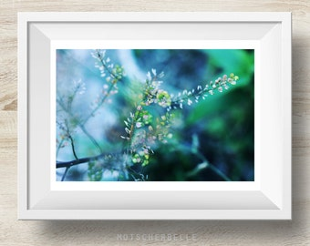 Morning Glory - abstract photography nature, macro, bokeh, hand-made, self-made, rare print, wall decoration