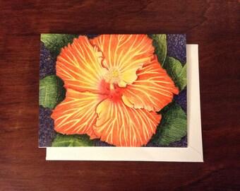 Hibiscus in Colored Pencil