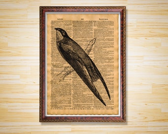 Antique dictionary page Swift Bird print Bird poster