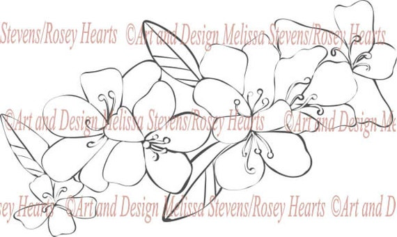 Cherry Blossoms a Rosey Hearts digital stamp made just for crafter's and the adult who love to color