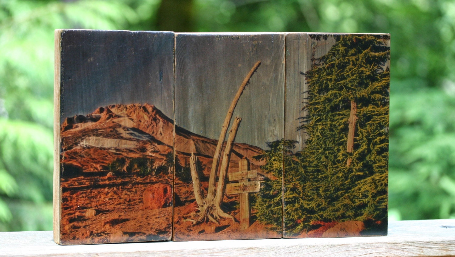 Photo On Wood Transfer Reclaimed Wood Mt Hood Oregon