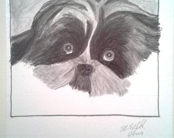 Cute Doggie Sketch