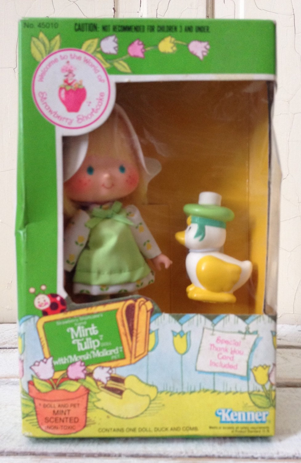 Strawberry Shortcake Mint Tulip Doll in Original by ...