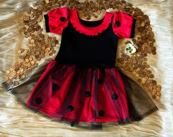 Little Lady Bug Tutu dress for girls and toddlers. Halloween, Birthday Party. Black and Red Ladybug 1 2 3 4 5 6 7 8 9 10 years girl Custome