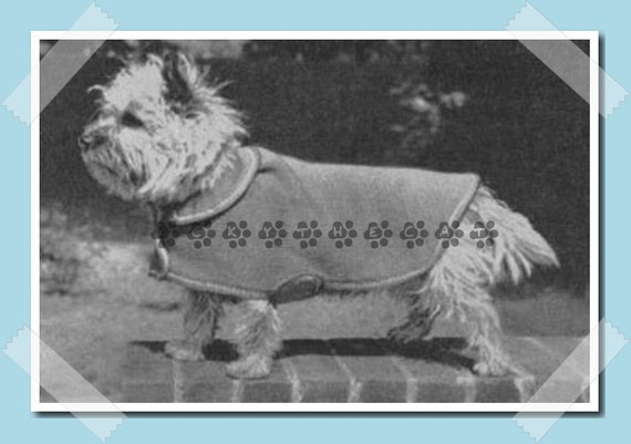 Vintage 50s Knitting Pattern to make Knitted Dog Coat or