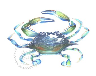 Blue Crab Maryland East Coast Beach Ocean Illustration Print Art