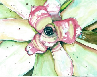 Watercolor print of Hawaiian succulent flower.