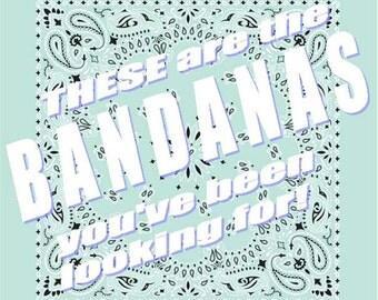 BANDANA - Bandanna. Premium Paisley Hav-A-Hank Bandana. MINT. Made in the USA.