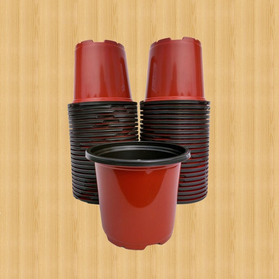 Inch round plastic flower pots perfect for seed