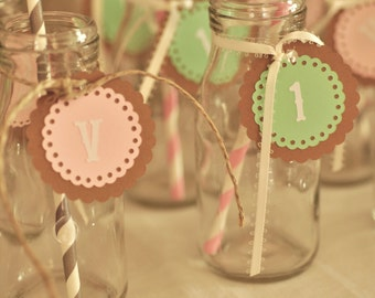 Drink tags - mint and pink - 24 count