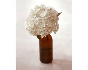 Hydrangea in Brown Bottle - 8x10 Vertical Print Neutral Flower Spring White Art Print Photograph