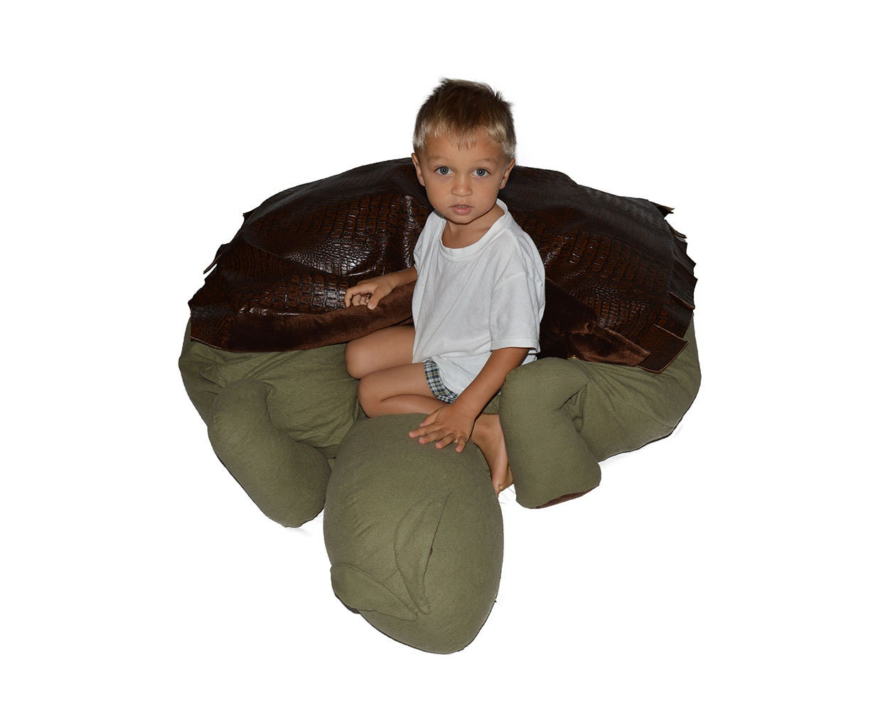 Turtle Bean Bag Chair With Leather Turtle Shell Blanket