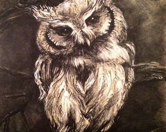PRINT 12x18 Owl