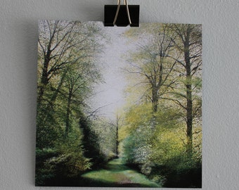 Weaving Through the Leaves - Fine Art card - Trees - Woodland