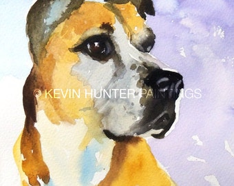 Crawford: a dog portrait in watercolor