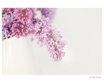Nature Photography PRINT, Lilacs - 2, Wall Art
