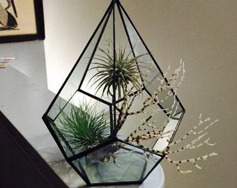 Pentagonal Pyramid Terrarium (16x24cm)  Kits