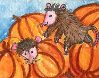 ACEO Possums Watercolors Painting Original, Opossums Playing on the Pumpkins  Original Watercolor Painting. Opossum Art Card