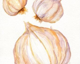 Garlic watercolors paintings original, Garlic  8 x 10, kitchen decor, garlic art, original watercolor painting of garlic bulbs