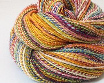 Handspun Yarn - Circus - 210 Yards