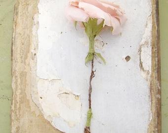 Second Wedding Anniversary Long Stem Rose Cotton Gift Flower
