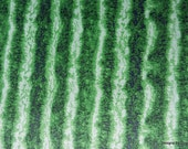 """One Fat Quarter Cut Quilt Fabric, """"Watermelon Skin"""", Timeless Treasures, Green Watermelon Rind, Quilting-Sewing-Craft Supplies"""