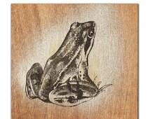 Popular Items For Frog Art On Etsy