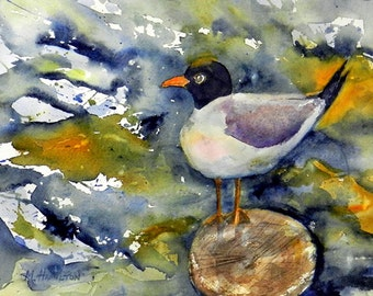 Bird Painting Seagull, Watercolor, Original Beach Wall Decor, Beach Bird Art, Angry Sea Gull
