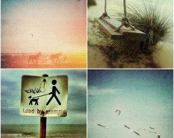 Beach Photography Set of Four 5x5 Seaside Photos, Birds in Flight, Horse Print, Animal Photography, Coastal Photographs